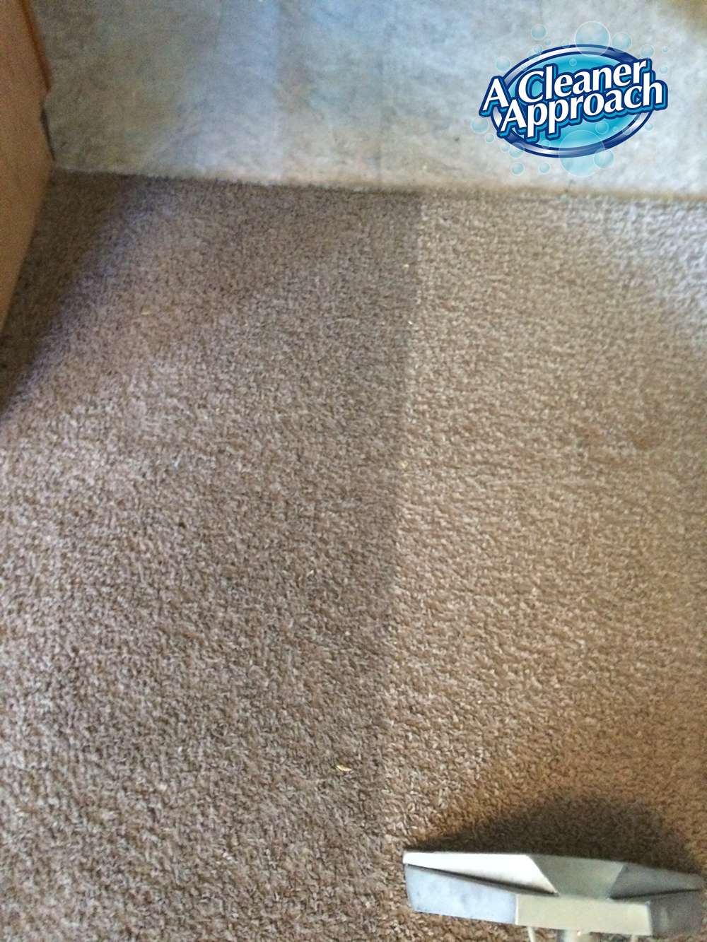 Carpet & Area Rug Cleaning 12