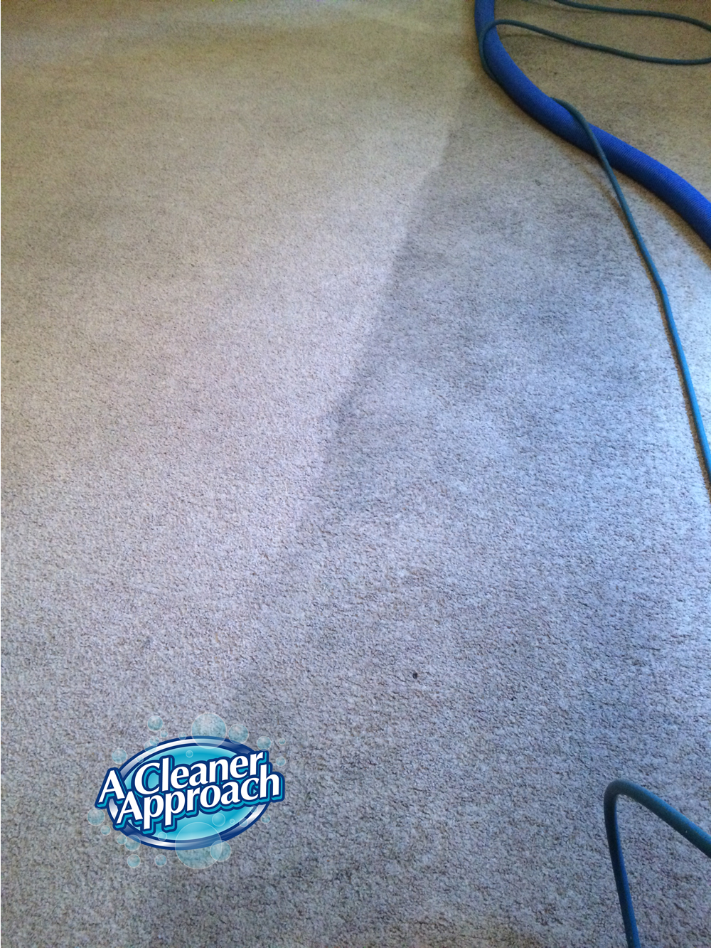 Carpet & Area Rug Cleaning 14