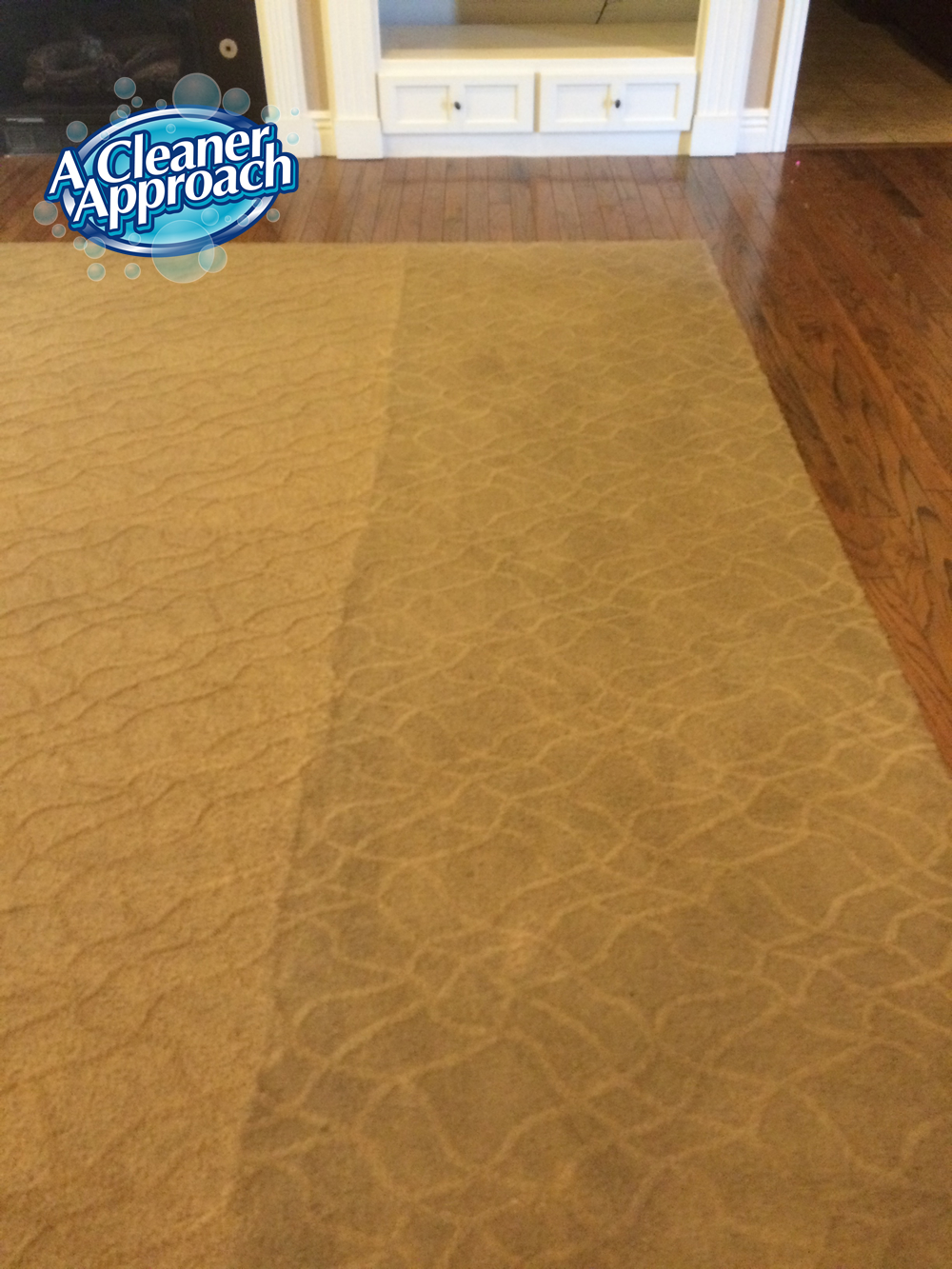 Carpet & Area Rug Cleaning 6
